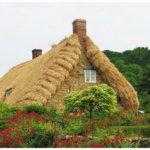 толстая соломенная крыша